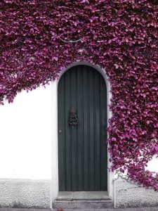 Garage Doors That Will Take Your Breath Away - Part 2
